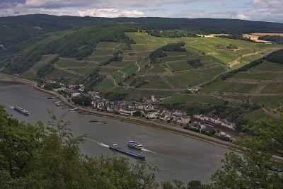 Der Rhein bei Assmannshausen