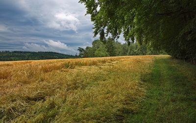 Zwischen Colmberg und Wildbad